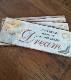 Blåt skilt Don´t dream your life, live your dream 15x39,5 cm. - 1