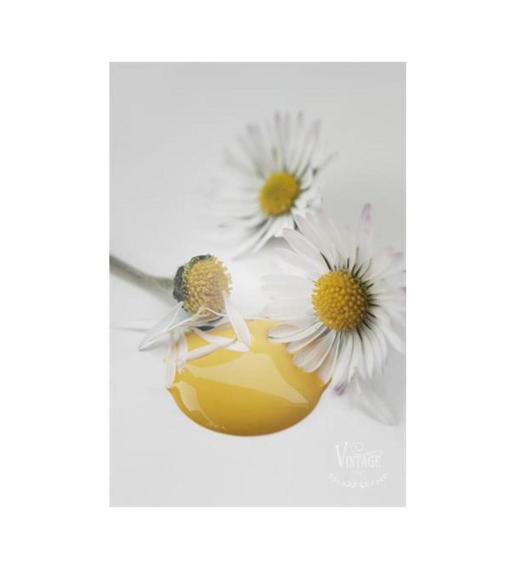 Kalkmaling Warm yellow 100 ml.  - 1