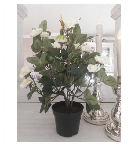 Kunstige hvide roser i potte H: 34 cm.  - 2
