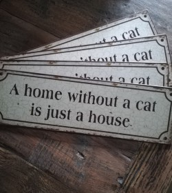 Skilt A home without a cat...