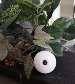 Møbelknop hvid porcelæn Ø:...
