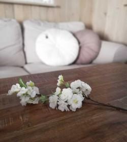 Lille kunstig hvid...