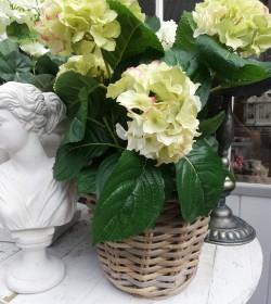 Kunstig limegrøn hortensia...