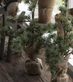 Kunstigt lille cedertræ...