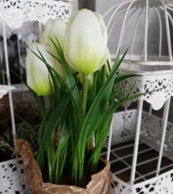 Kunstige hvide tulipaner i potte H: 23 cm.   - 2
